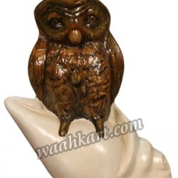 Vastu Piece of Art - Brown Owl On Divine Shankh