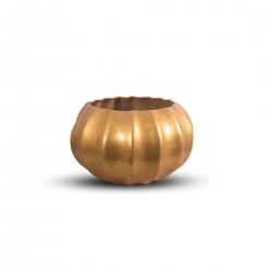 Multipurpose Golden Color Urli