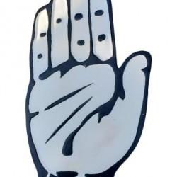 Congress 2D Panja Logo (White)