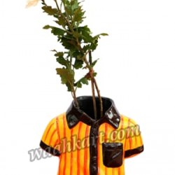 Shirt Shape Planter