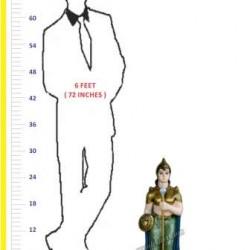 Traditional Look Darban - The Royal Guard